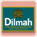 Dilmah帝瑪茶館